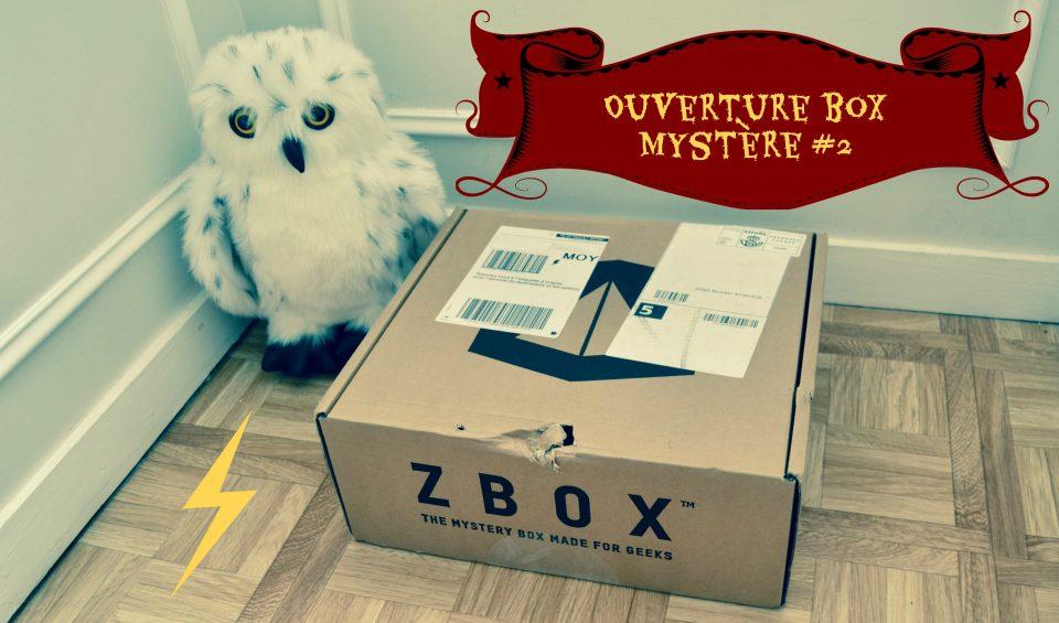 OUVERTURE – Box Mystère #2 – HARRY POTTER ⚡