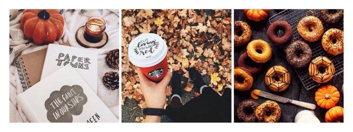 Autumn Vibes 🍂🍁